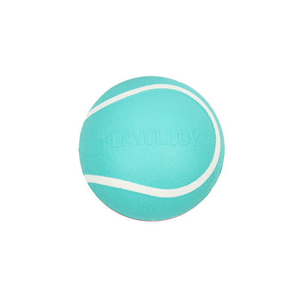 Playology Blue Squeaky Chew Ball - Available in 2 Sizes | Pisces Pets