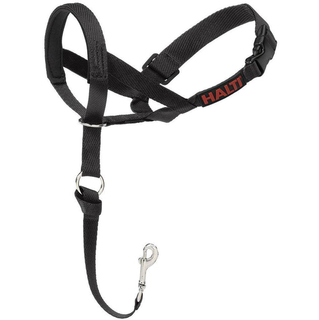Halti Nylon Head Collar - Available in 5 Sizes | Pisces Pets