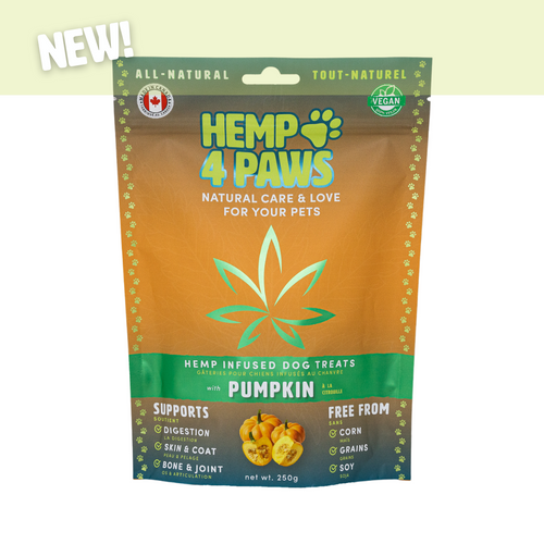 Hemp4Paws Hemp Infused Treats - Pumpkin 250g
