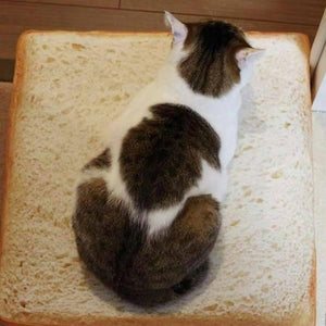 Toast Bread Bed