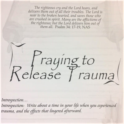 Praying to Release Trauma - 201 School Lesson 16 (mp3) - Elijah House