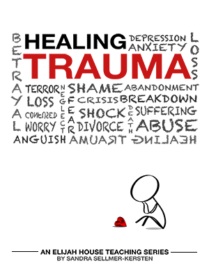 Healing Trauma 2013 CD Set - Elijah House