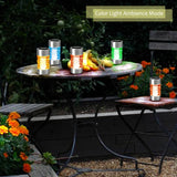 Landscape Solar Lights - LED Waterproof Pathway - Glass Stainless Steel – Warm/Color Changing -Torch