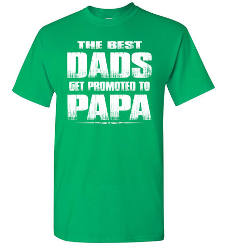 The Best Dads Get Promoted To Papa Tshirt green