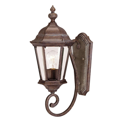 Wakefield 20 Inch Tall 1 Light Outdoor Wall Light by Savoy House