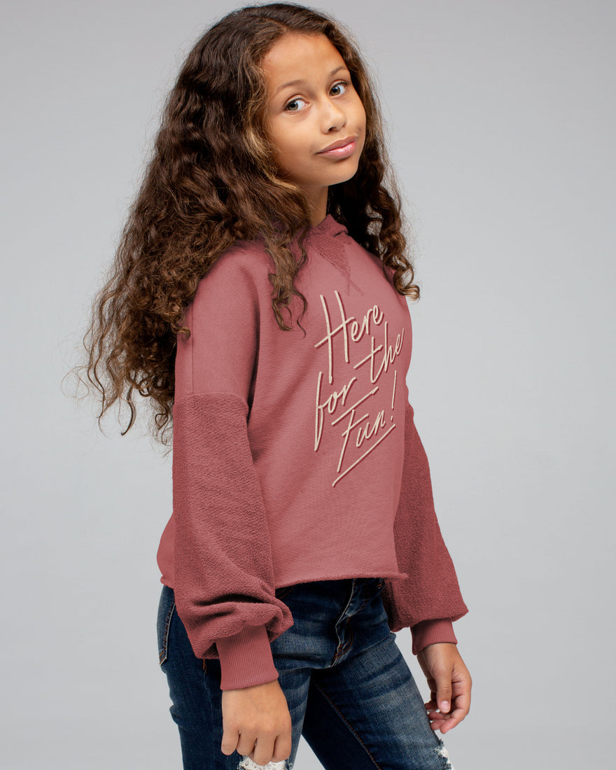GIRLS HERE FOR THE FUN HOODIE – Junk Food Clothing