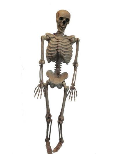 "60"" Hanging Skeleton-Halloween Props and Decorations-Jokers Costume Hire and Sales Mega Store"