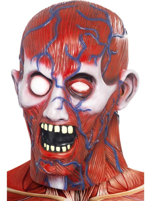 Anatomy Man Mask-Masks - Halloween-Jokers Costume Hire and Sales Mega Store