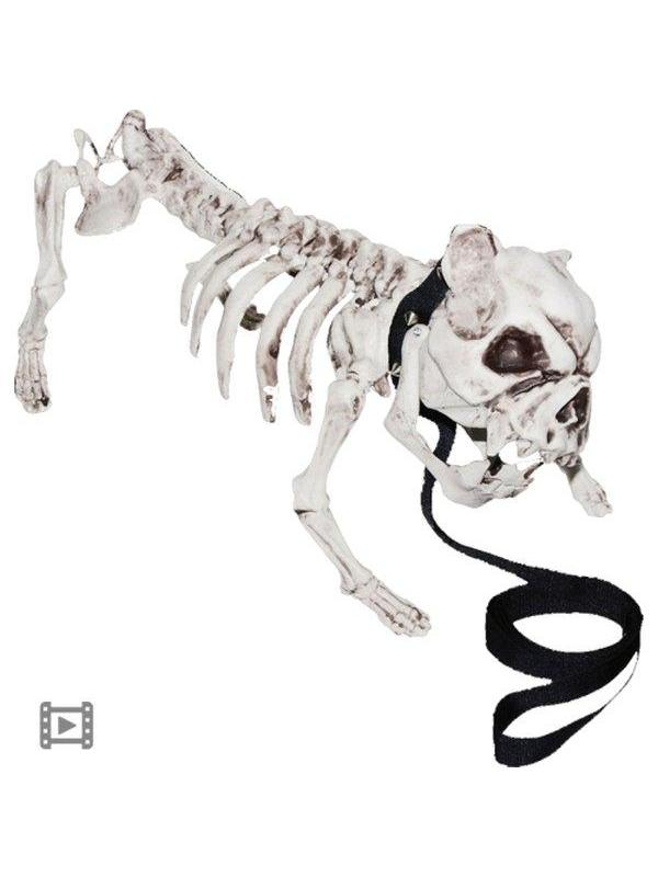 Animated Barking Skeleton Dog-Halloween Props and Decorations-Jokers Costume Hire and Sales Mega Store