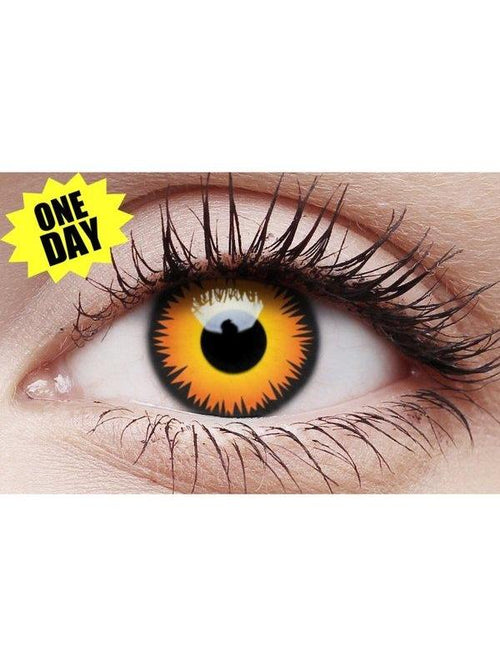 Crazy One-Day Contact Lens - Orange Wolf-Contact Lens - Crazy One Day-Jokers Costume Hire and Sales Mega Store