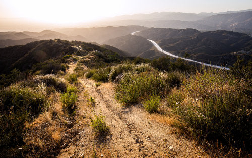 Hiking for Nature Lovers: L.A.