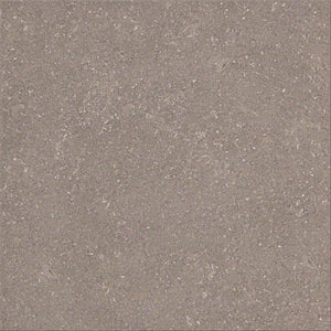 Stonetech GT06620 Taupe structured finish porcelain floor tile 900x450x10mm