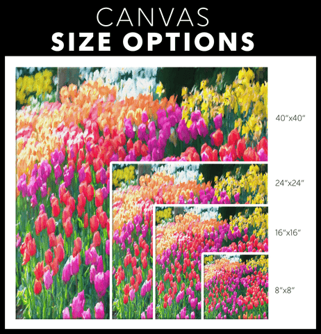 teelaunch Canvas Wall Art 3 Tulips in Full Bloom Portrait - Canvas Wall Art