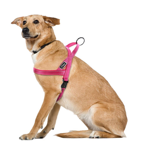 No Pull Reflective Dog Leash Harness