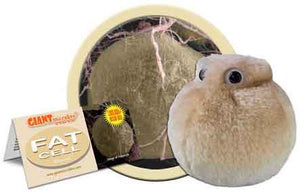 Giant Microbes Plush - Fat Cell (Adipocyte) close up