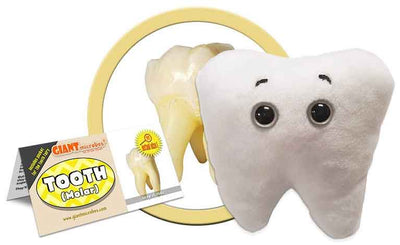 Giant Microbes Plush - Tooth (Molar) close up
