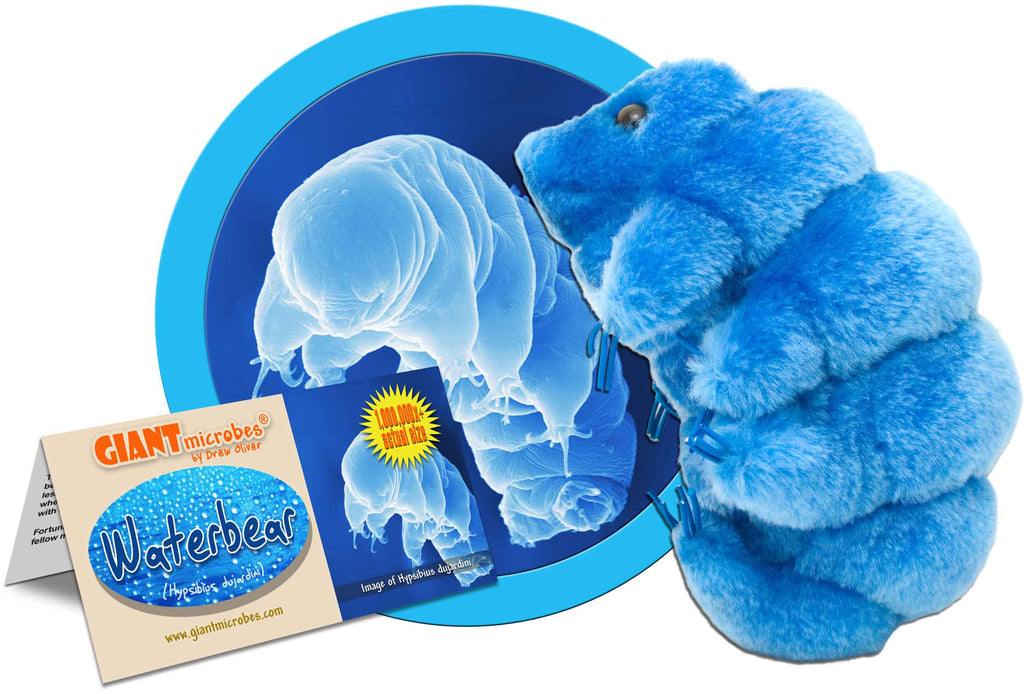Giant Microbes Plush - Waterbear (Tardigrade)