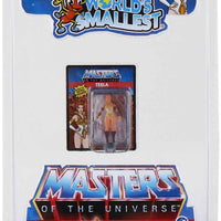 World's Smallest Masters of the Universe Teela in package