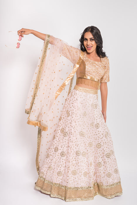 Aurora Lengha - Gotta Patti embroidered lengha with Fully embroidered blouse - bAnuDesigns