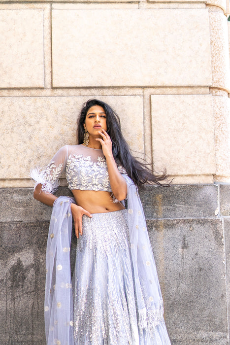Geena Lengha - Net Lehenga with Sequin & Zardozi Work - bAnuDesigns