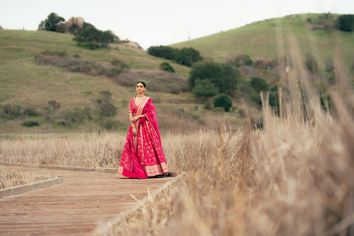 Traditional Fusia Pink Brocade Lehenga choli with embellished border