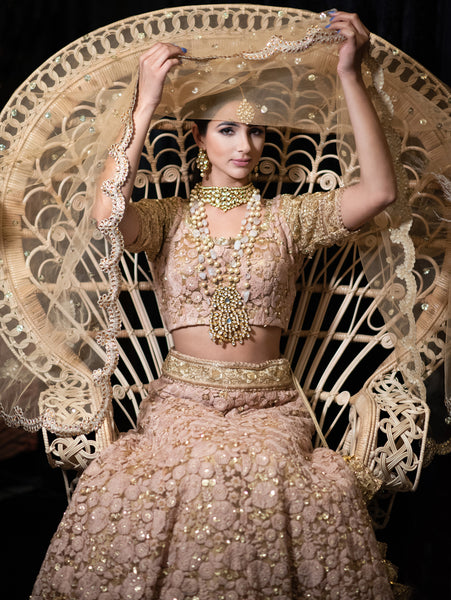 Indian wedding bride dress in pink pastel