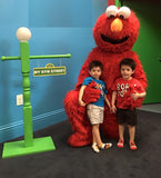 3ft Tall Sesame Street inspired Lamp Post Rental, Local Sesame Street Prop Rental, Sesame Street Lamp Post