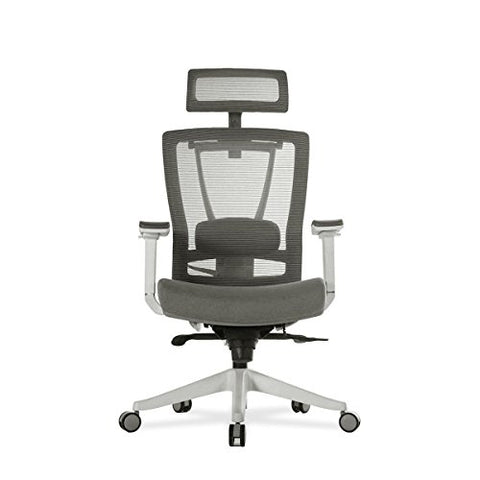 Autonomous ErgoChair - Premium Ergonomic Office Chair - Gray