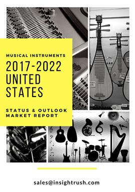 2017-2022 United States Electric Guitar Market Report (Status and Outlook)