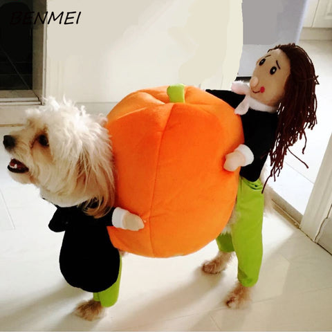 Funny Pumpkin Dog Clothes