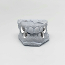 Custom Chrome Quadruple Grillz