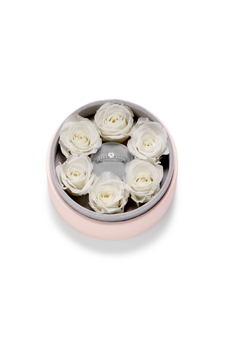 (DO NOT DELETE) Rosebox Rings