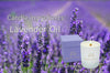Candle ingredients: Lavender Oil - Sweet Dreams