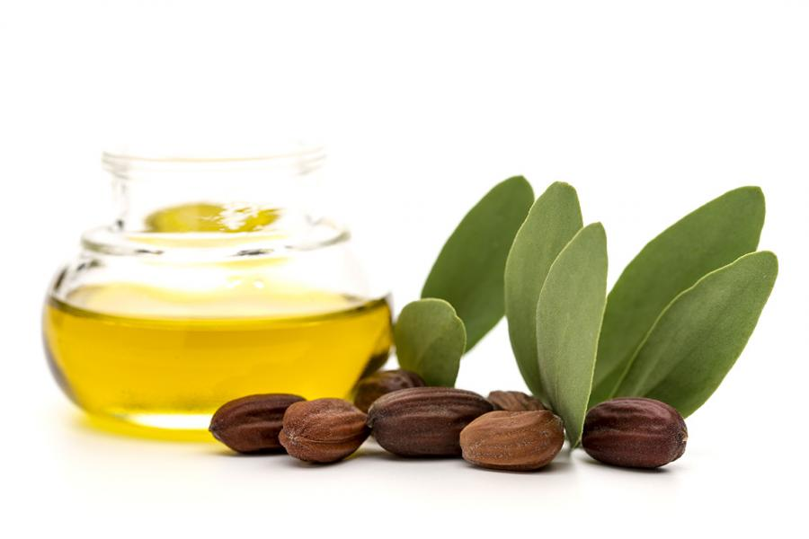 Why jojoba oil is surprisingly good for your lips