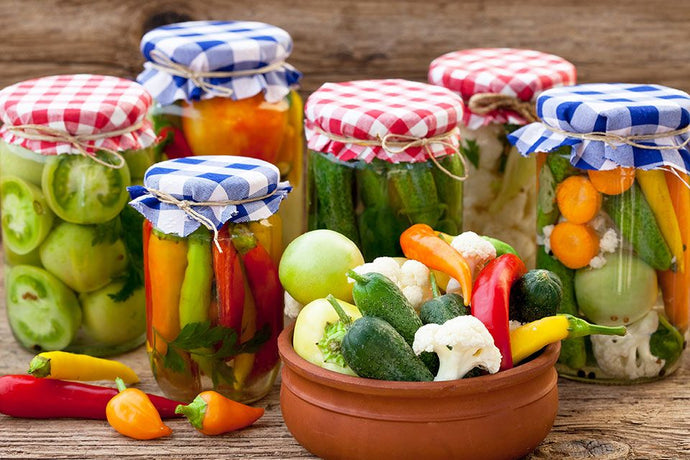 Health and Preparation of Fermented Foods