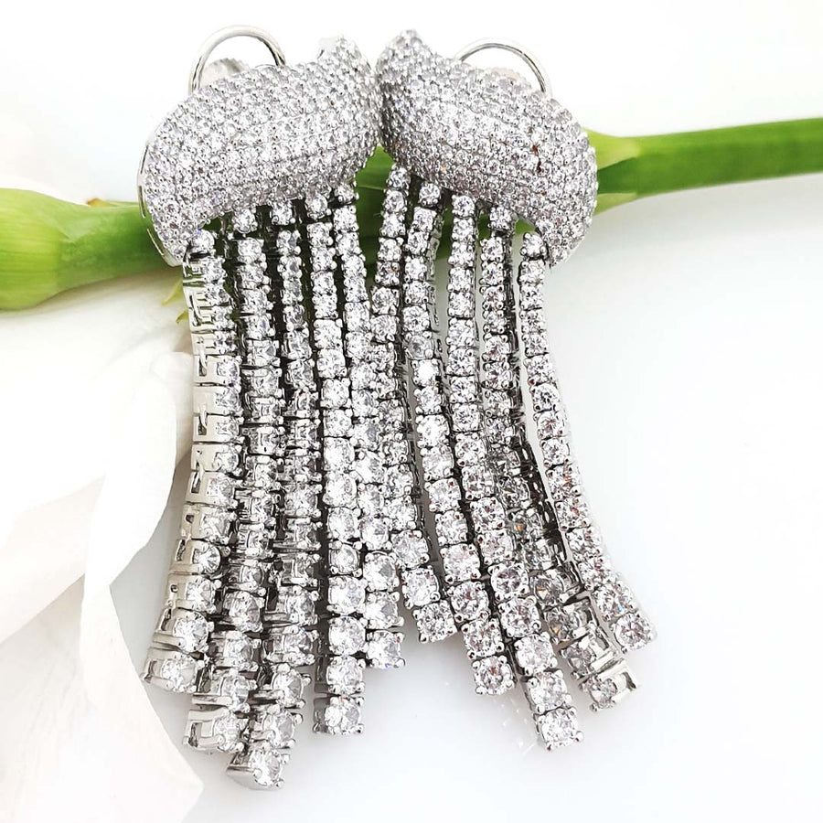 Luxurious Long Earrings