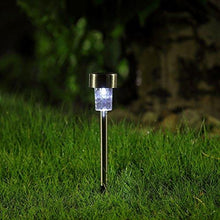 Solar Pathway Garden Light - TTSPGL2W (Pack of 30) - tapetum.in