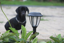 Solar Vintage Garden Light - TTSVMGL2W (Pack of 10) - tapetum.in