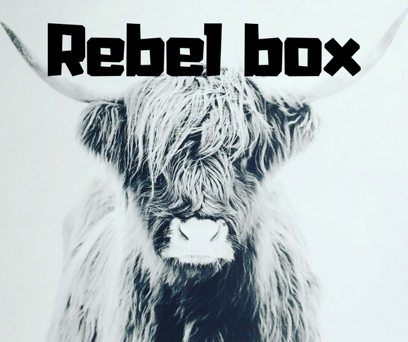 Mini Rebel box