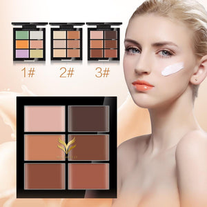 6 Color Waterproof Makeup Foundation Concealer