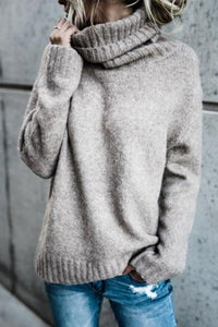 Turtle Neck  Plain Warm Sweaters