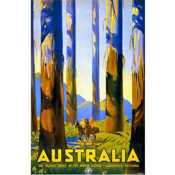 AUSTRALIA | AUSTRALIA - THE TALLEST TREES 50x70