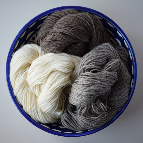 BLUEFACED LEICESTER FLEECE DK :: British BFL