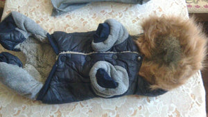 Warm Jacket Winter for Dogs