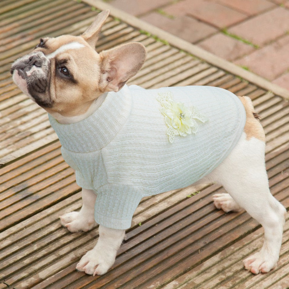Warm Knit Sweater for Small Dogs