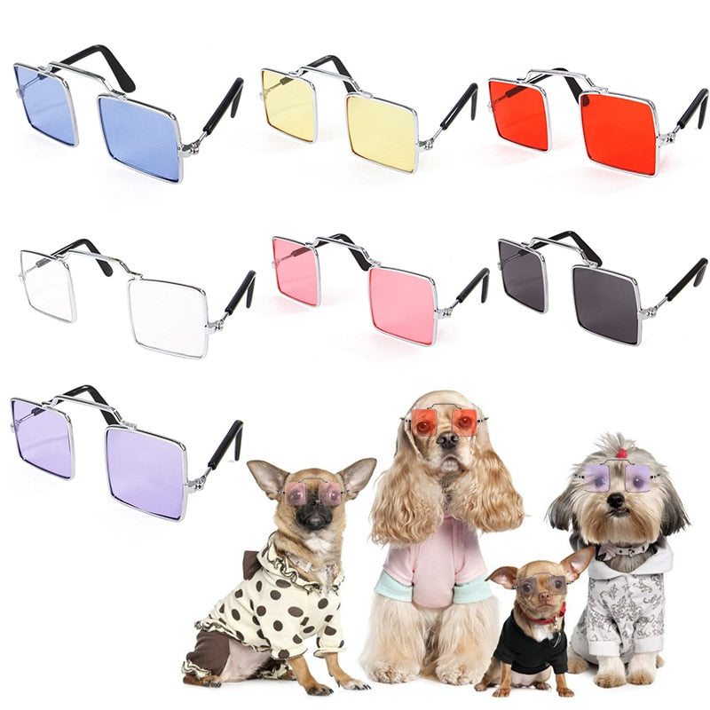 Sunglasses For Small Dog Cat