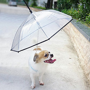 Umbrella With Leash for Small Dogs & Puppies