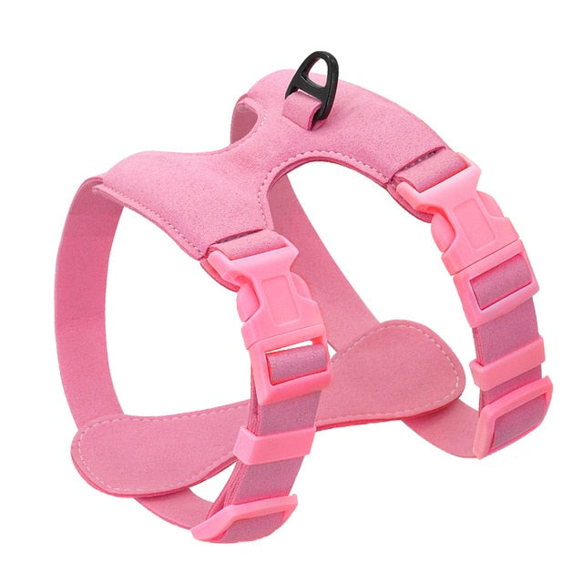 Dog Harness For Small Dogs