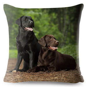 Pillow(HD013) Chocolate and Black Labs
