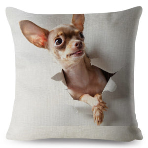 "Pillow(HD032) ""Hi, I'm HERE""... Chihuahua Puppy"